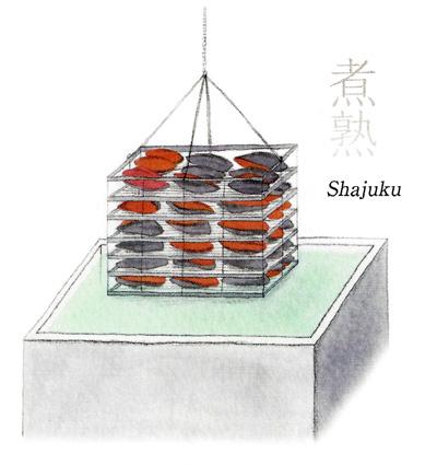Shajuku