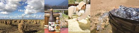 Les matières premières de qualité de la société Sennari: le riz biologique et l'eau d'une source d'eau souterraine d'une qualité exceptionnelle.