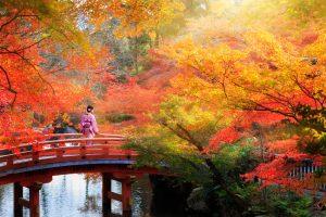paysage d'automne au Japon, momiji, kôyô