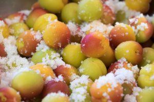 Les prunes ume sont salées